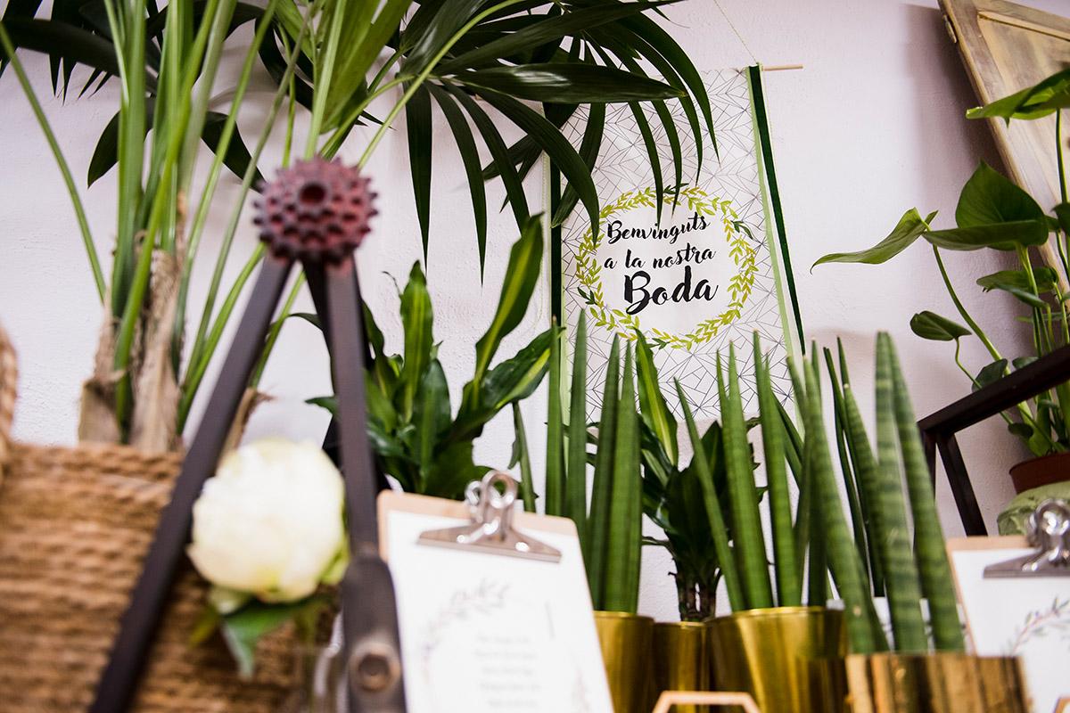 Boix Verd floristería